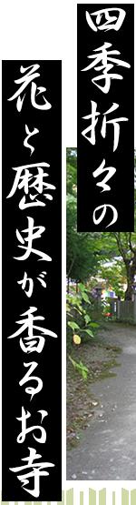 四季折々の花と歴史が香るお寺