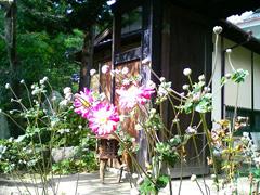 9月 山門から本堂への参道
